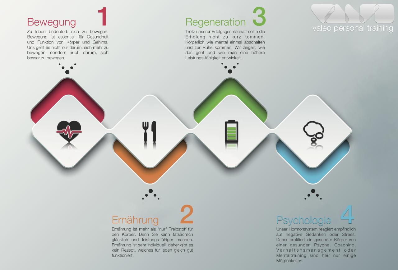 Vier Säulen Infografik_web