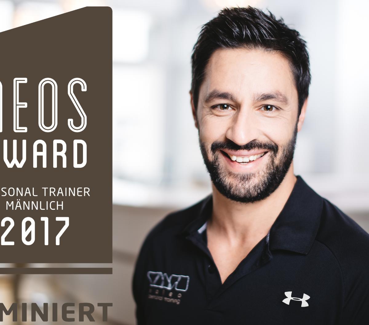 Niko Neos Award web